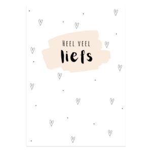 heel veel liefs kaart wenskaart postkaart kaartje kopen bestellen online webwinkel winkeltjevanlies
